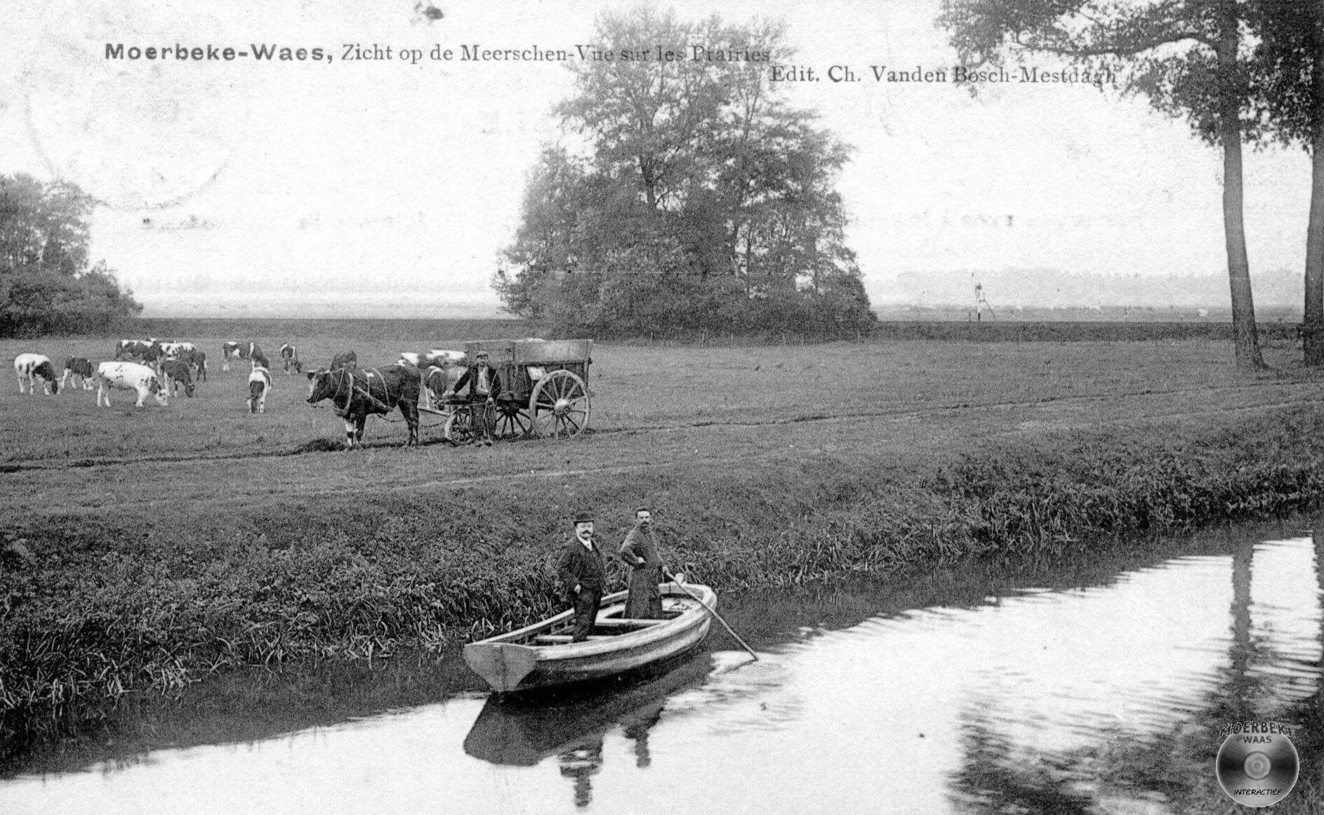 De Rode Ruiter - Frank Pollet (Moerbeke-Waas)